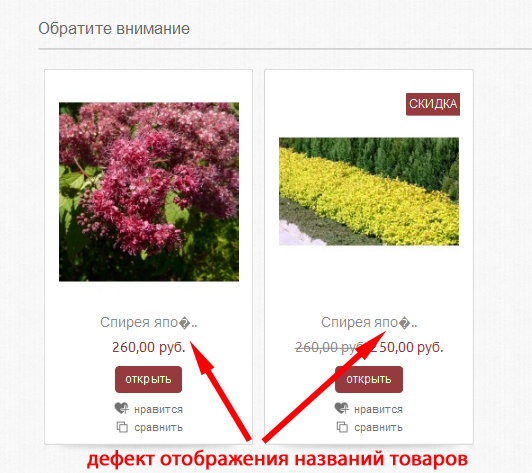 Прикрепленное изображение: Дефект-отображения-названий-товаров.png