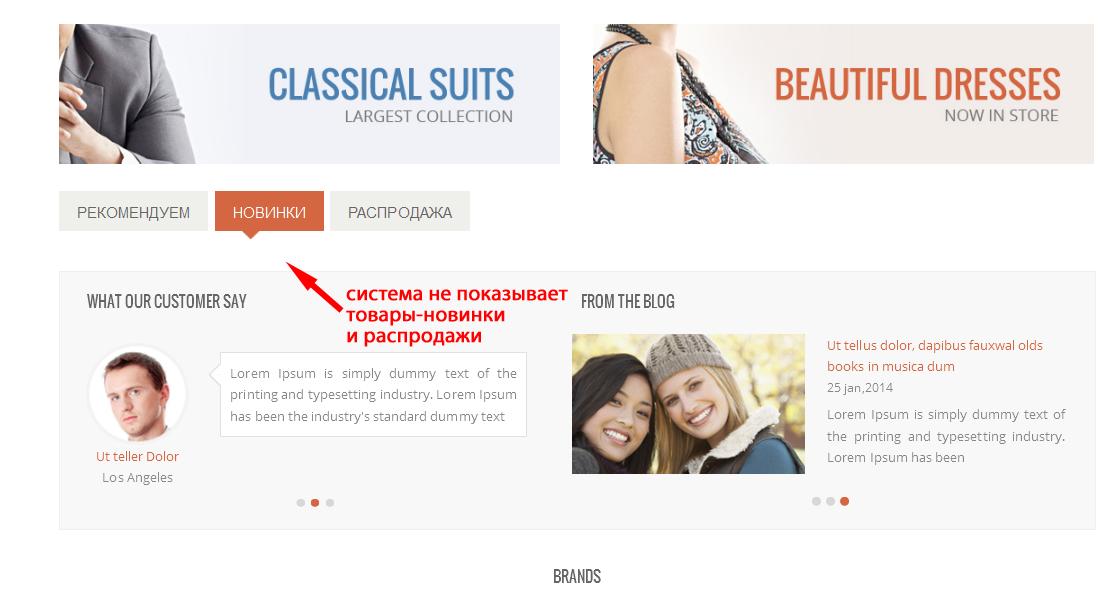 Прикрепленное изображение: Дефект-отсутствия-блоков-товаров-новинок-и-распродаж-на-главной-странице-витрины.png