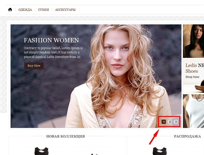 Прикрепленное изображение: magento-thermeforest-fancy-shop-slider-defect-fixed.png