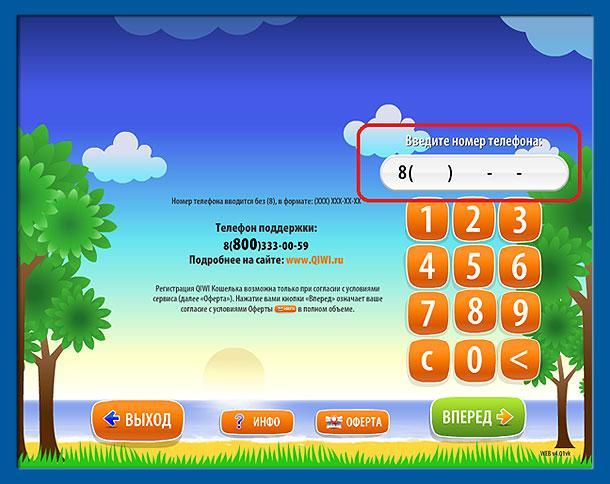 Прикрепленное изображение: qiwi-payment-2.jpg
